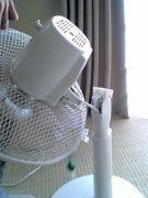 首がポッキリ折れた扇風機