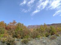 富士山頂上(ヘタレ携帯画像)