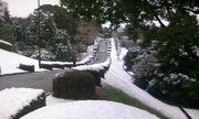 会社の前の雪景色